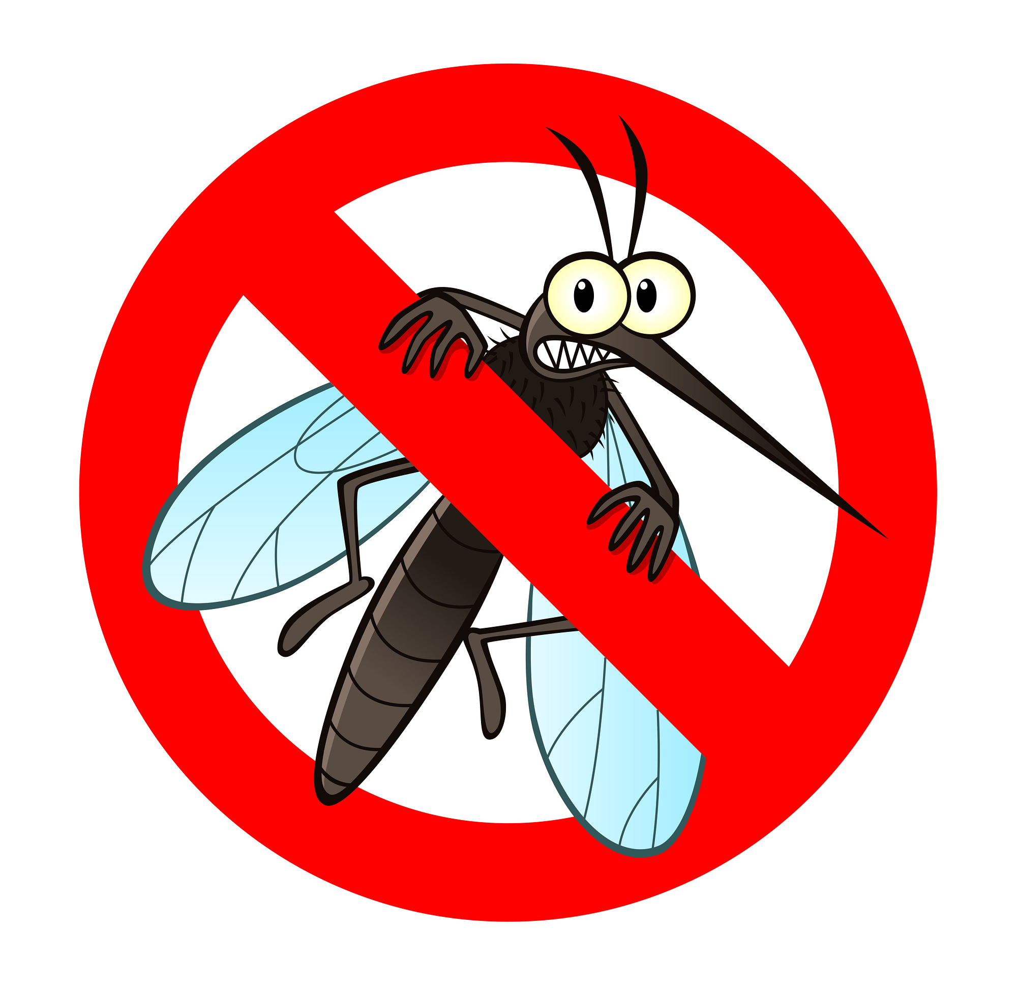 Image result for mosquito cartoon png