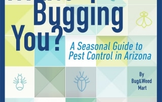 What's Bugging You: A Seasonal Guide to Pest Control in Arizona