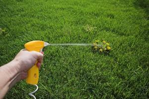 post emergent herbicide