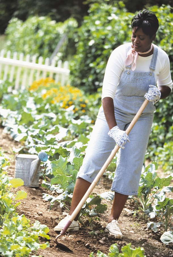 National Weed Your Garden Day