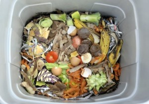 how to vermicompost